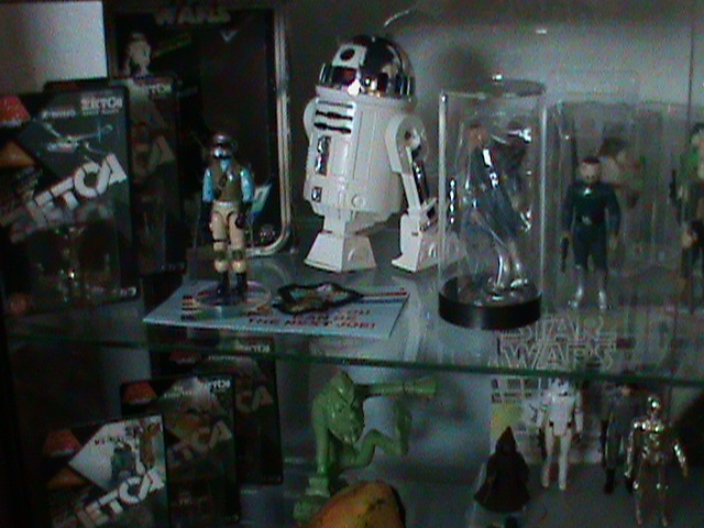Current set up and still working...Counter Display, 12 backs, and other collectibles Toy_ro18
